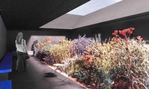 O xardín das contemplacións | Íñigo García Odiaga