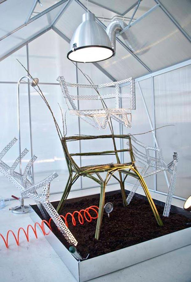 Chair Farm Aisslinger : Chair farm cultivando sillas xosé suárez