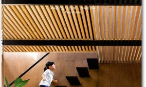 Wood Architecture Now! (Vol.02)