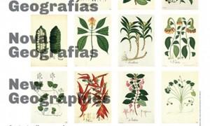 IX BIAU. Nuevas Geografías. Contextos iberoamericanos
