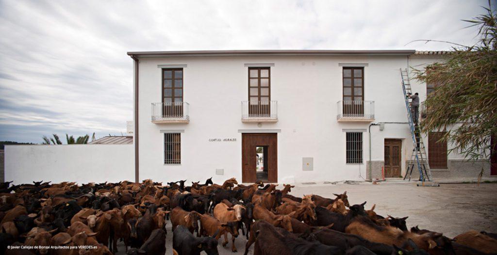 Cortijo Morales Bonsai Arquitectos o1