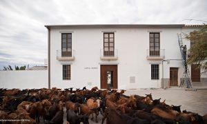 Cortijo Morales | Bonsai Arquitectos