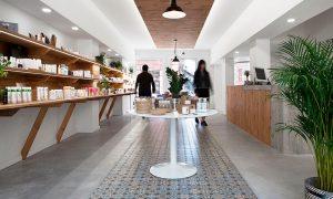 lily & WHITE | soma arquitectura