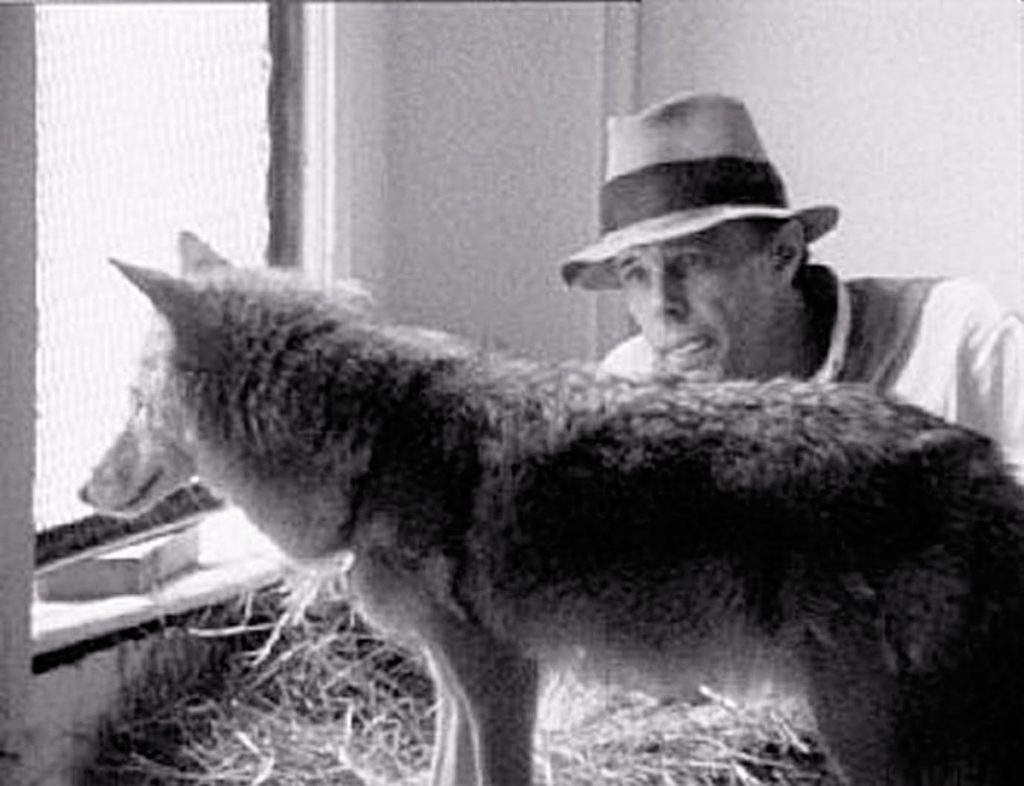 Coyote. Joseph Beuys