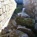 Rehabilitación nave lateral del monasterio de San Clodio en Leiro OLA estudio EA02