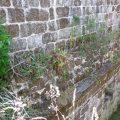 Rehabilitación nave lateral del monasterio de San Clodio en Leiro OLA estudio EA13