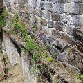 Rehabilitación nave lateral del monasterio de San Clodio en Leiro OLA estudio EA15