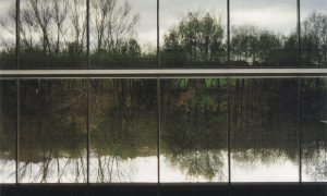 Esbozos del viaje de la arquitectura a la naturaleza en la obra de Manuel Gallego Jorreto. La vegetación entreverada | Luis Gil