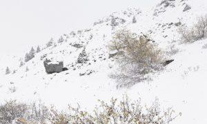 Desaparecer | Íñigo García Odiaga
