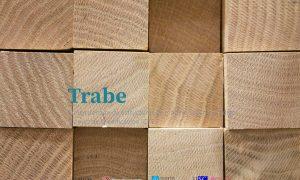 TRABE, herramienta gratuita para el cálculo estructural de la madera, diseñada por PEMADE