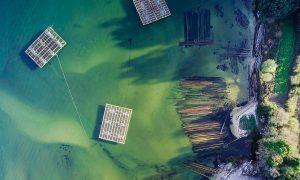 Arquitectura límite. Construcción industrial en el borde litoral