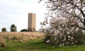 Consolidación y Restauración de la Torre Espioca de Picassent | el fabricante de espheras